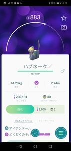 Screenshot_20191026_122201_com.nianticlabs.pokemongo.jpg